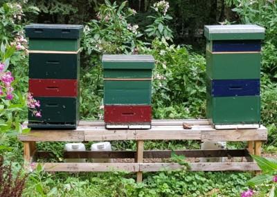 Bijen Landgoed Zonheuvel Moestuin
